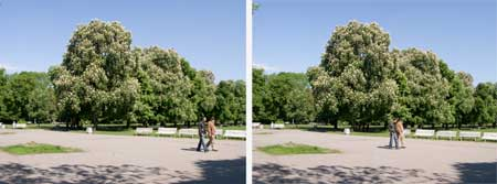 Two variations of a Strol in the Park