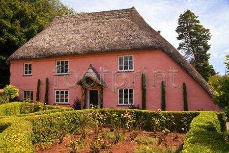 Rose Cottage in Cockington stockphoto by John Rocha