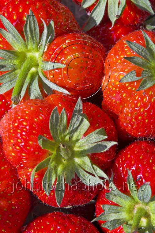 Ripe Strawberries Close Up