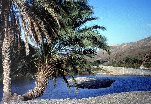 Sharqiya Rock Pool by John Rocha