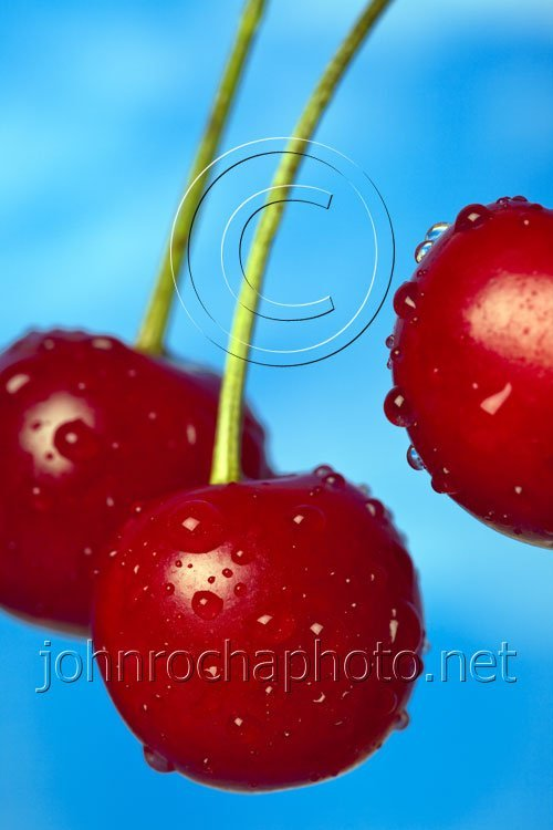 Three Morello Cherries Closeup in the Sky