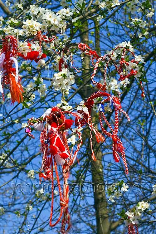 Martinitsi in the trees in Bulgaria