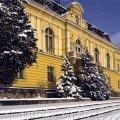Art Gallery in Winter Bulgarian buildings